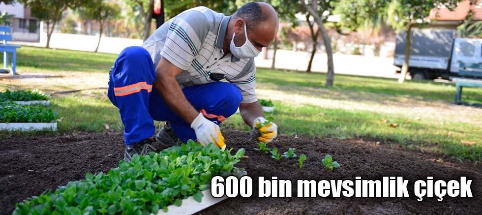 600 bin mevsimlik çiçek