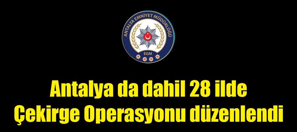 Antalya da dahil 28 ilde Çekirge Operasyonu düzenlendi