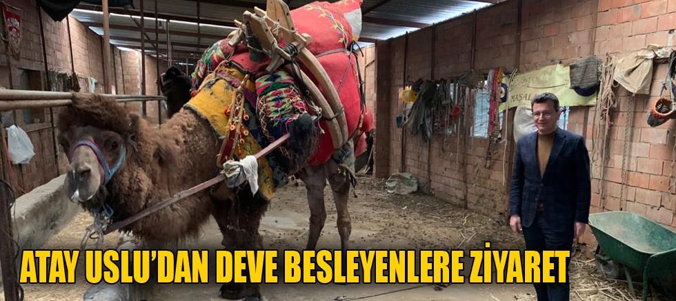 Atay Uslu'dan deve besleyenlere ziyaret
