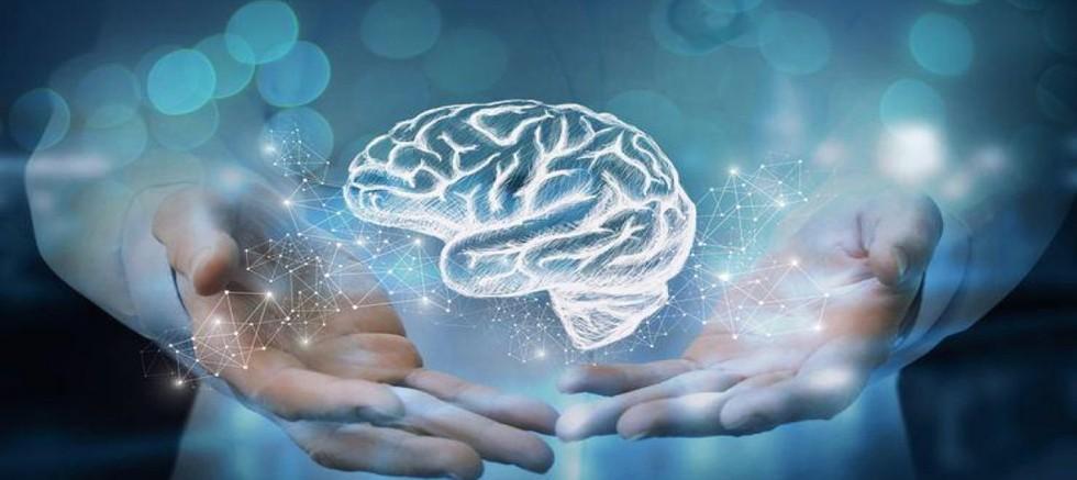 Beyin sağlığı için faydalı 5 önemli besin