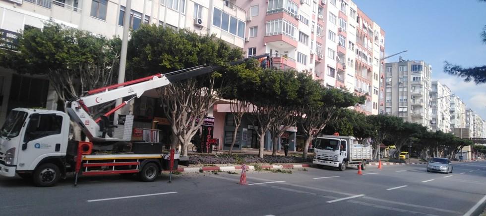 Büyükşehir'den merkezde bakım onarım çalışması