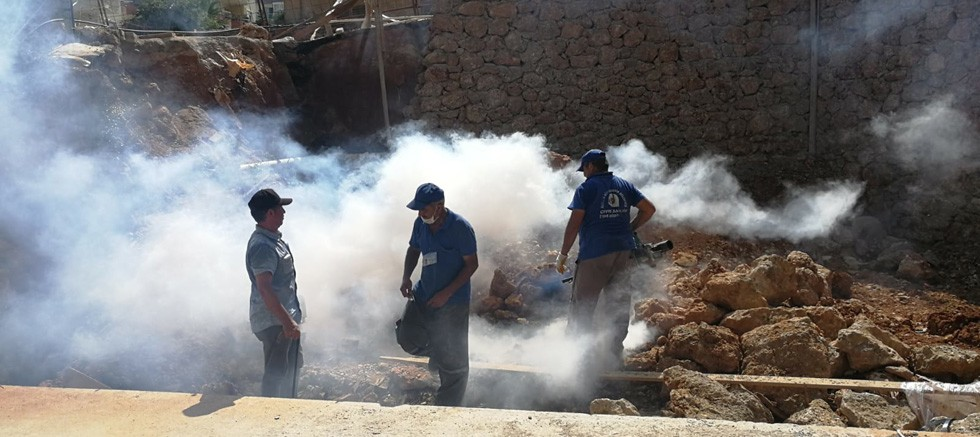 Büyükşehir'in sinekle mücadelesi yıl boyu sürüyor