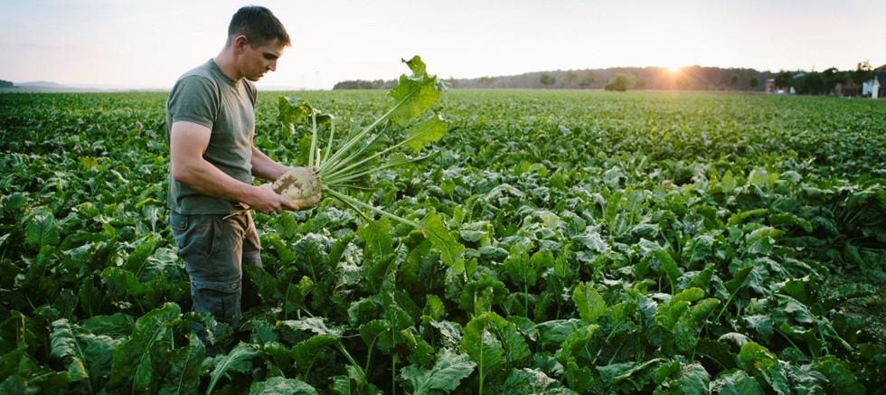 Çevresel Sorunlarla ilgili endişe gıdada satın alma alışkanlıklarını etkiliyor