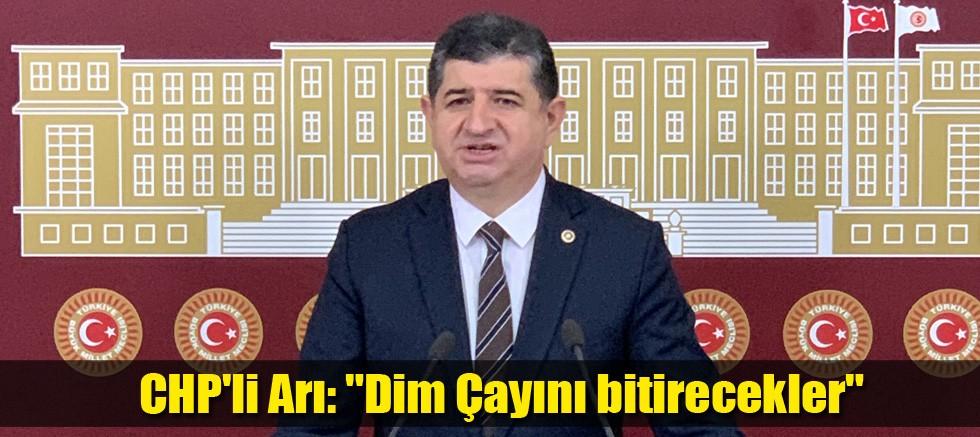 CHP'li Arı: