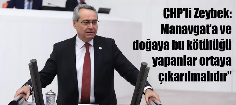 CHP'li Zeybek: Manavgat'a ve doğaya bu kötülüğü yapanlar ortaya çıkarılmalıdır