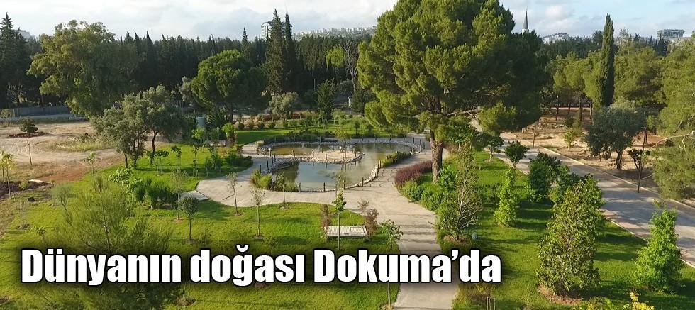 Dünyanın doğası Dokuma'da
