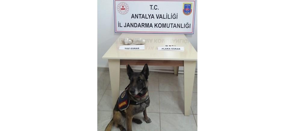 İç çamaşırında uyuşturucu yakalanan şüpheli gözaltına alındı
