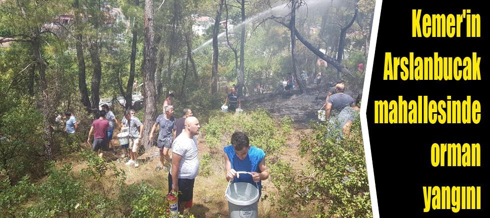 Kemer'in Arslanbucak mahallesinde orman yangını