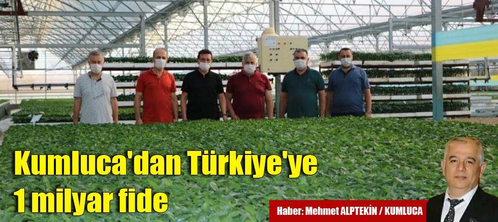 Kumluca'dan Türkiye'ye 1 milyar fide