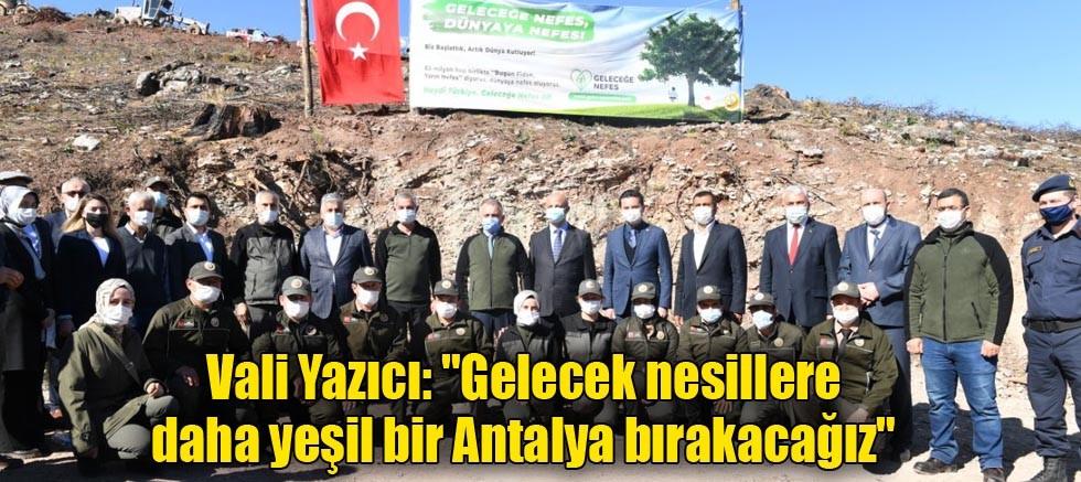 Vali Yazıcı:
